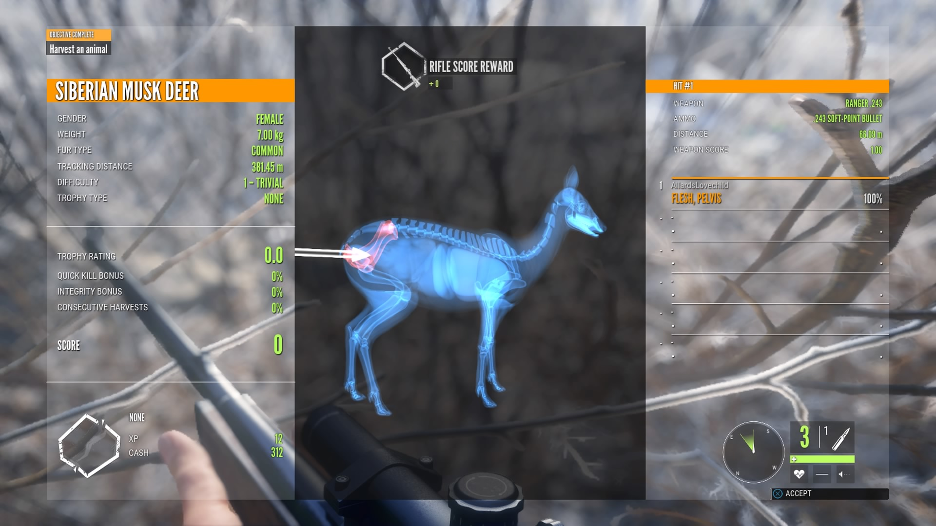 the hunter call of the wild gameplay review