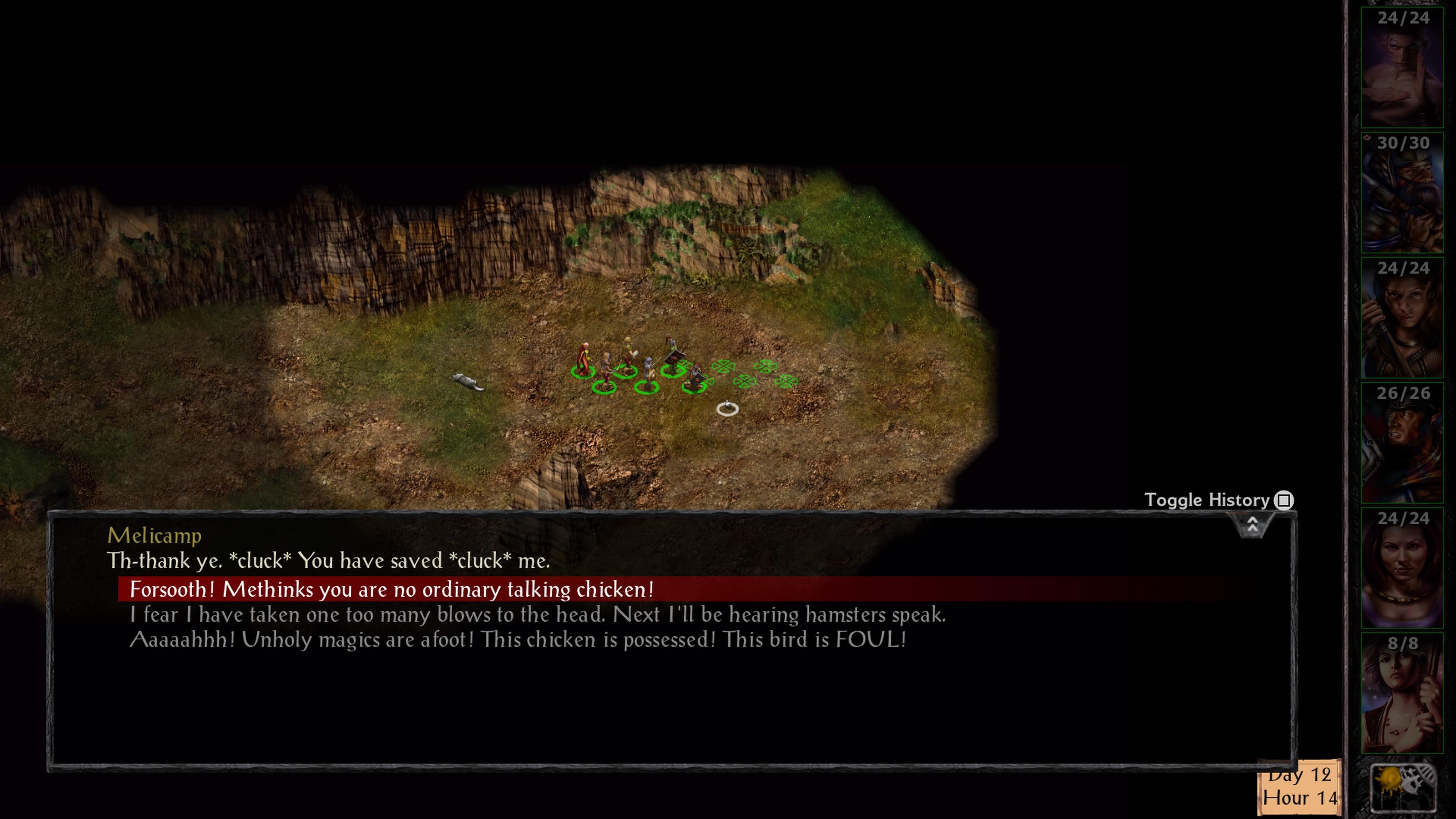 Baldur S Gate And Baldur S Gate Ii Enhanced Editions Ps4